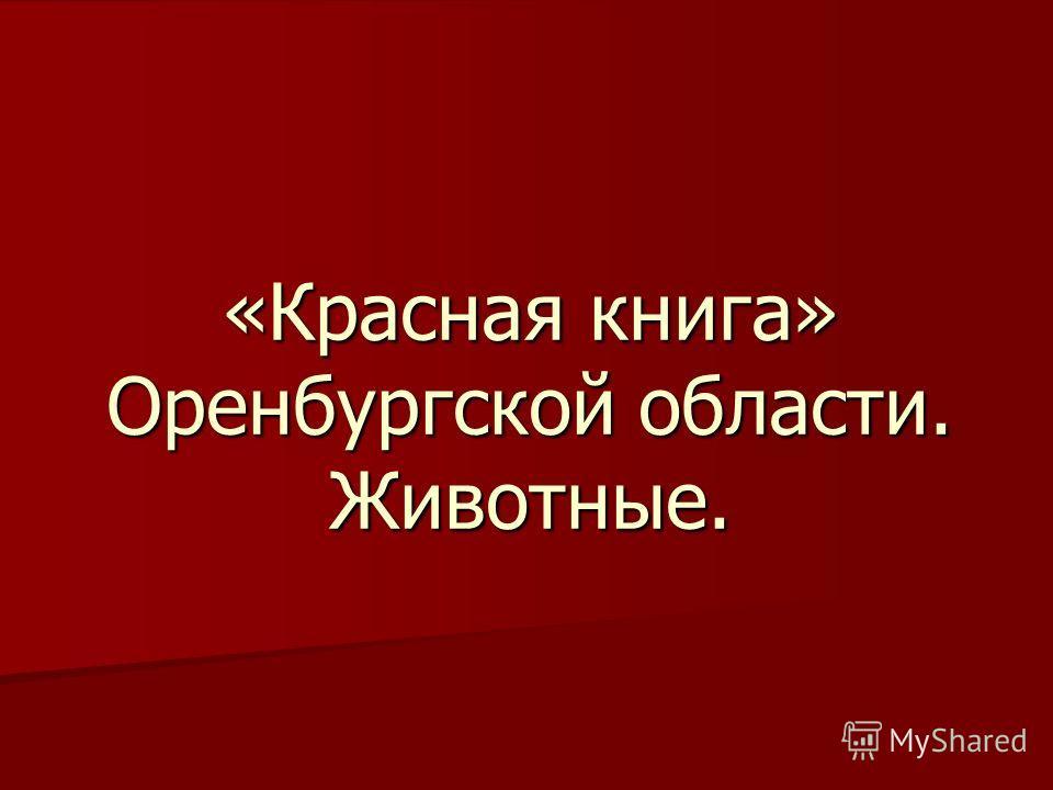«Красная книга» Оренбургской области. Животные.