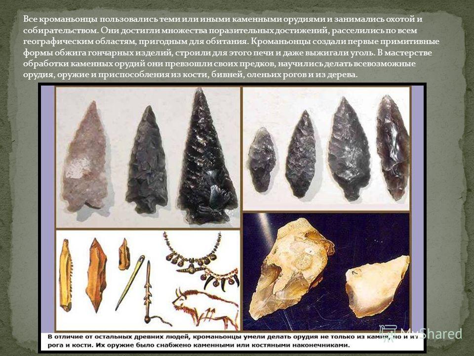 Все кроманьонцы пользовались теми или иными каменными орудиями и занимались охотой и собирательством. Они достигли множества поразительных достижений, расселились по всем географическим областям, пригодным для обитания. Кроманьонцы создали первые при