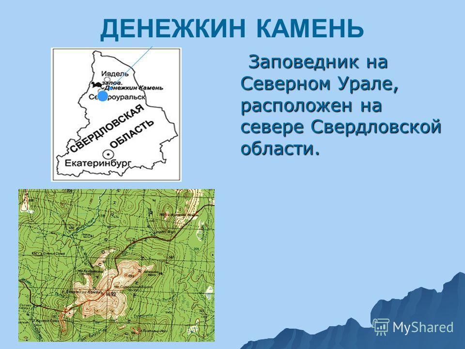 ДЕНЕЖКИН КАМЕНЬ Заповедник на Северном Урале, расположен на севере Свердловской области. Заповедник на Северном Урале, расположен на севере Свердловской области.