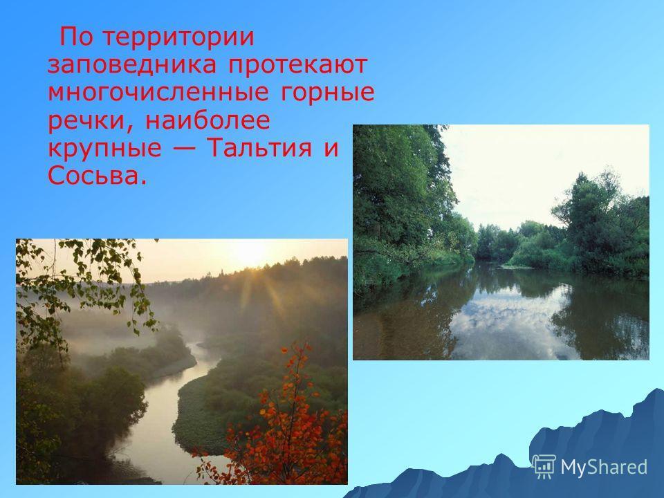 По территории заповедника протекают многочисленные горные речки, наиболее крупные Тальтия и Сосьва.
