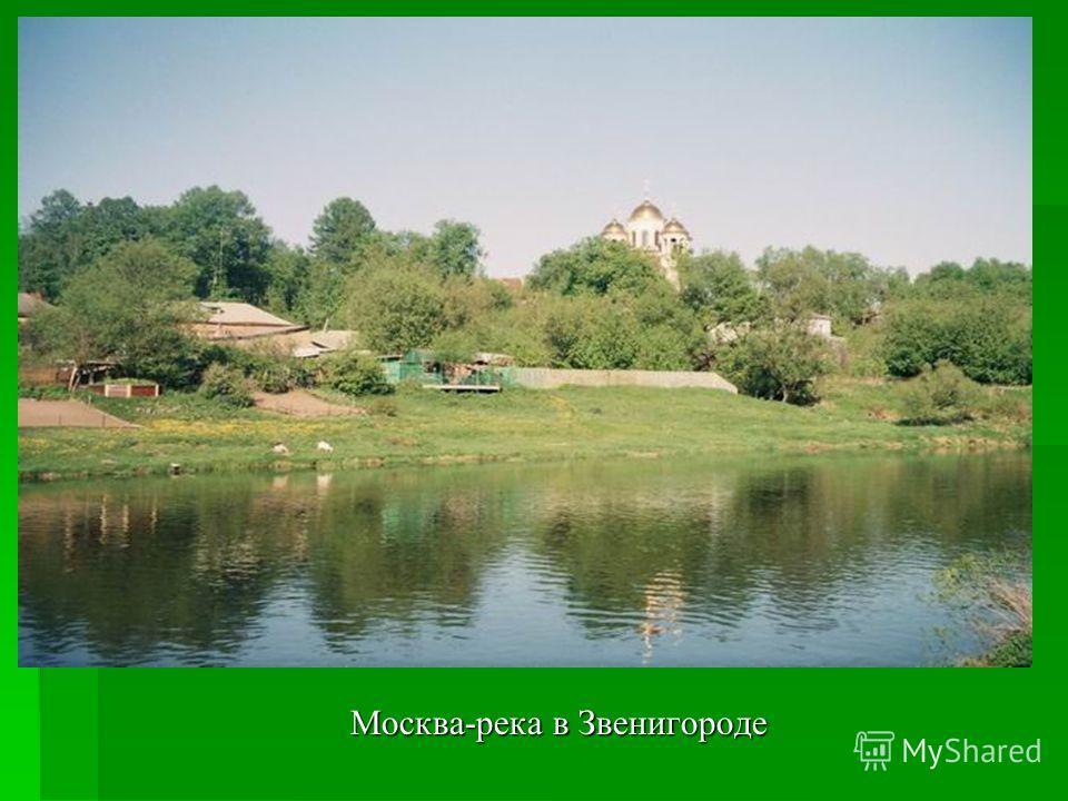 Москва-река в Звенигороде Москва-река в Звенигороде