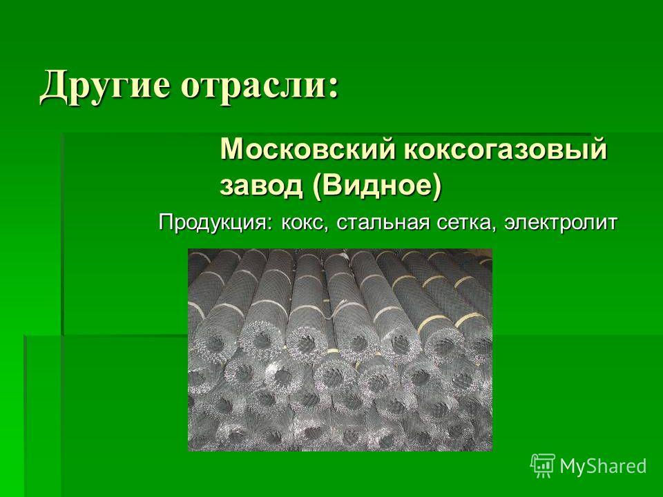 Другие отрасли: Московский коксогазовый завод (Видное) Продукция: кокс, стальная сетка, электролит