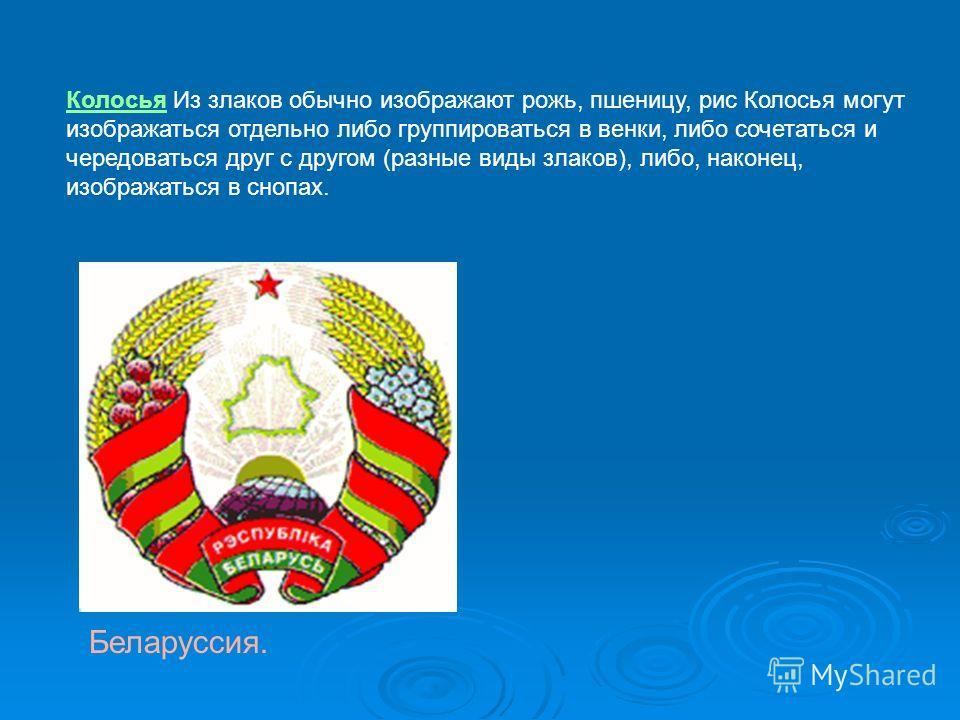 Колосья Из злаков обычно изображают рожь, пшеницу, рис Колосья могут изображаться отдельно либо группироваться в венки, либо сочетаться и чередоваться друг с другом (разные виды злаков), либо, наконец, изображаться в снопах. Беларуссия.