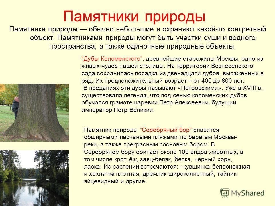 Памятники природы Памятники природы обычно небольшие и охраняют какой-то конкретный объект. Памятниками природы могут быть участки суши и водного пространства, а также одиночные природные объекты. Дубы Коломенского, древнейшие старожилы Москвы, одно