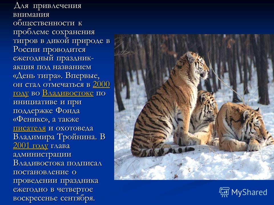 Для привлечения внимания общественности к проблеме сохранения тигров в дикой природе в России проводится ежегодный праздник- акция под названием «День тигра». Впервые, он стал отмечаться в 2000 году во Владивостоке по инициативе и при поддержке Фонда