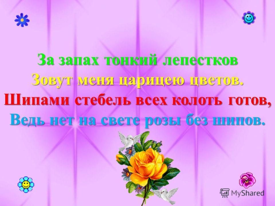 За запах тонкий лепестков Зовут меня царицею цветов. Шипами стебель всех колоть готов, Ведь нет на свете розы без шипов.