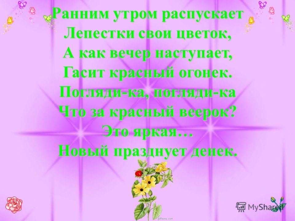 Ранним утром распускает Лепестки свои цветок, А как вечер наступает, Гасит красный огонек. Погляди-ка, погляди-ка Что за красный веерок? Это яркая… Новый празднует денек.
