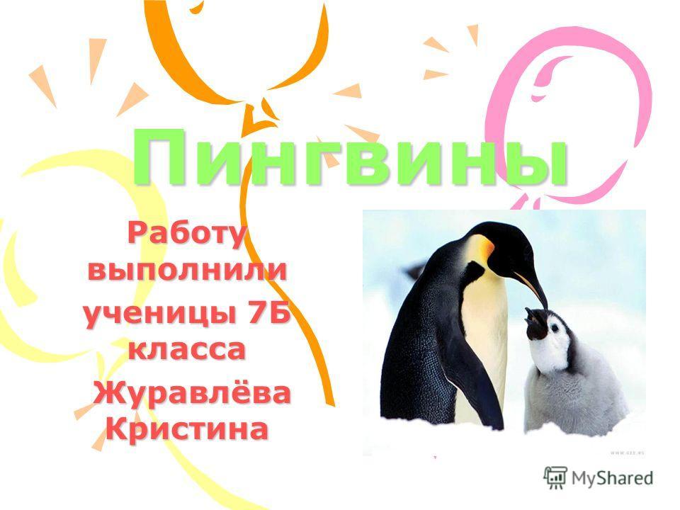 Пингвины Работу выполнили ученицы 7Б класса Журавлёва Кристина Журавлёва Кристина