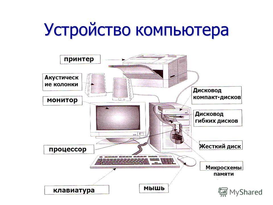 Устройство компьютера мышь клавиатура монитор принтер Дисковод компакт-дисков Микросхемы памяти Жесткий диск Дисковод гибких дисков процессор Акустическ ие колонки