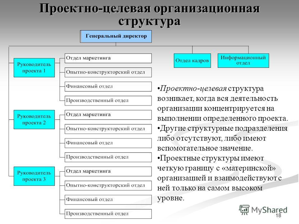 18 Проектно-целевая организационная структура Проектно-целевая структура возникает, когда вся деятельность организации концентрируется на выполнении определенного проекта. Другие структурные подразделения либо отсутствуют, либо имеют вспомогательное