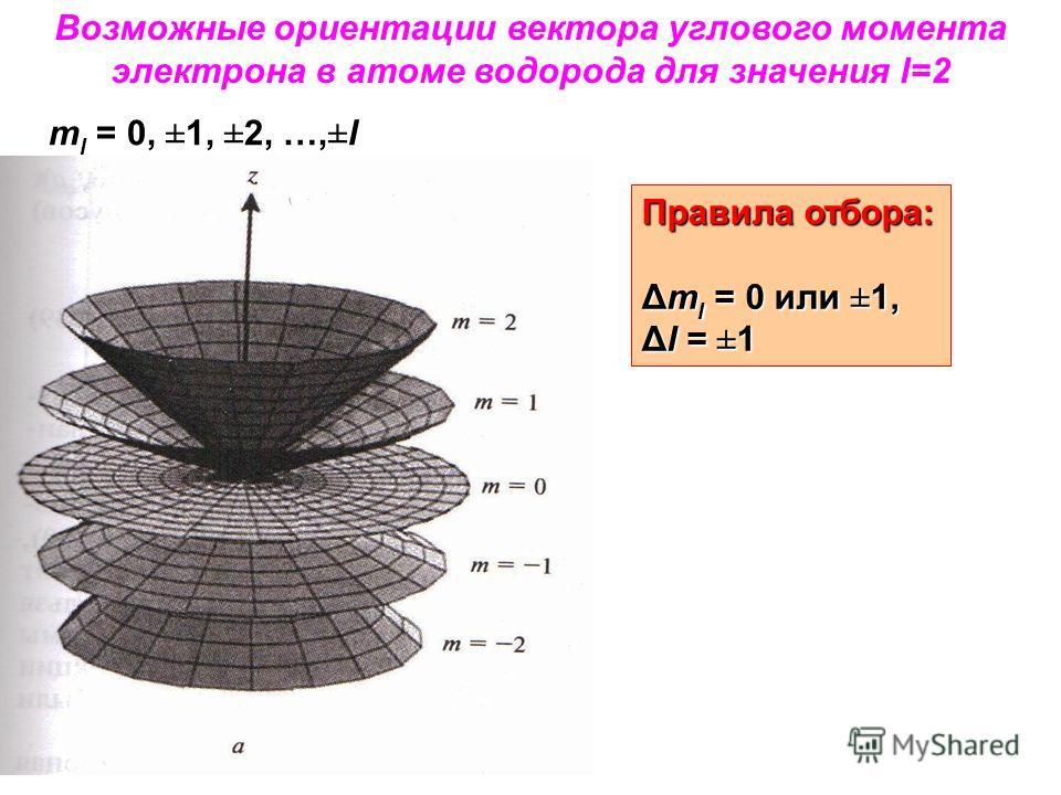 Возможные ориентации вектора углового момента электрона в атоме водорода для значения l=2 m l = 0, ±1, ±2, …,±l Правила отбора: Δm l = 0 или ±1, Δl = ±1