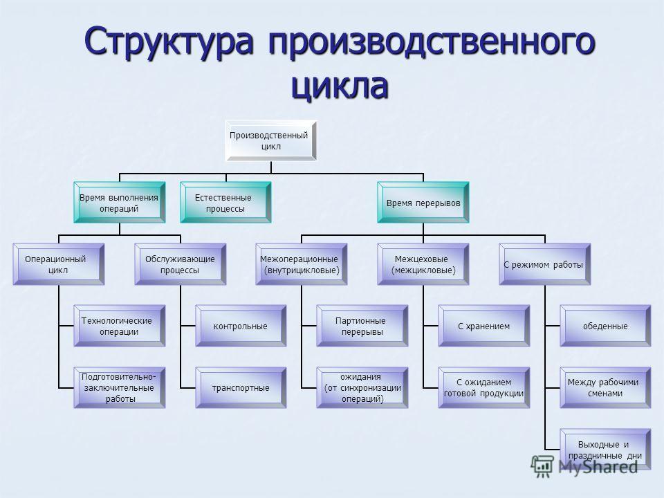 Структура производственного цикла Производственный цикл Время выполнения операций Операционный цикл Технологические операции Подготовительно- заключительные работы Обслуживающие процессы контрольные транспортные Естественные процессы Время перерывов