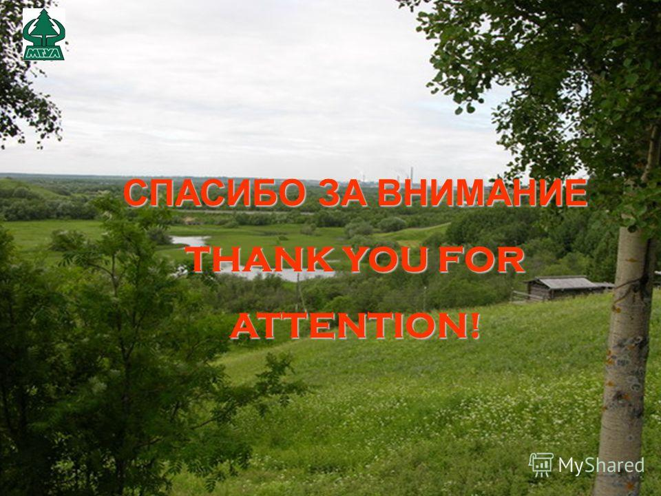 СПАСИБО ЗА ВНИМАНИЕ THANK YOU FOR ATTENTION!