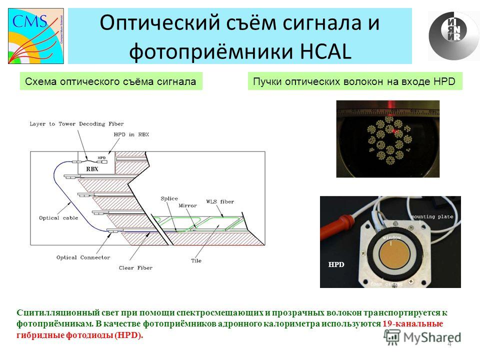 Оптический съём сигнала и фотоприёмники HCAL 4 Сцитилляционный свет при помощи спектросмещающих и прозрачных волокон транспортируется к фотоприёмникам. В качестве фотоприёмников адронного калориметра используются 19-канальные гибридные фотодиоды (HPD