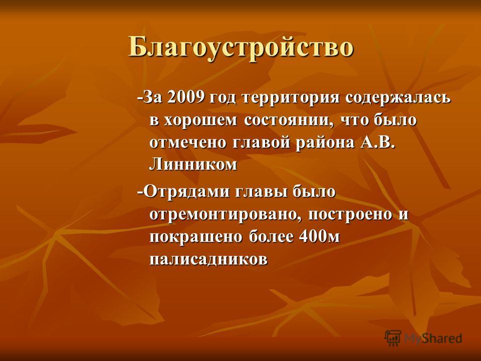 Благоустройство -За 2009 год территория содержалась в хорошем состоянии, что было отмечено главой района А.В. Линником -Отрядами главы было отремонтировано, построено и покрашено более 400м палисадников