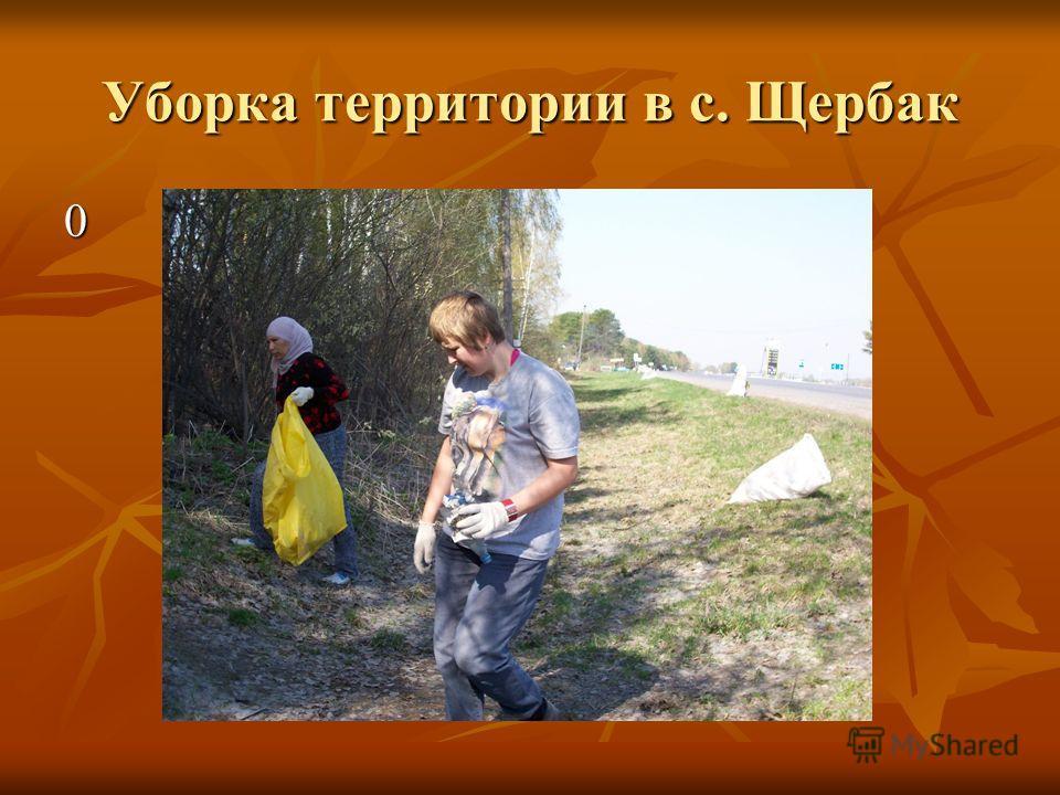 Уборка территории в с. Щербак 0