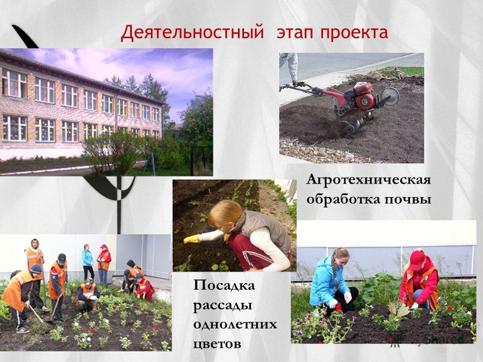Деятельностный этап проекта Агротехническая обработка почвы Посадка рассады однолетних цветов