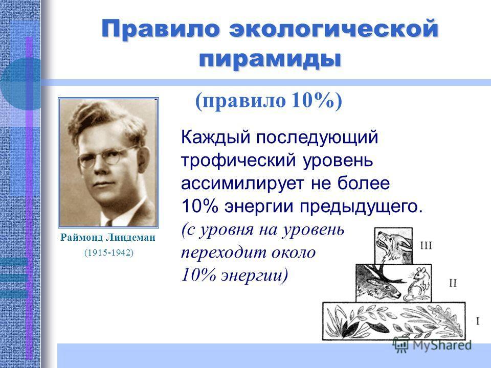 Правило экологической пирамиды (правило 10%) Раймонд Линдеман (1915-1942) Каждый последующий трофический уровень ассимилирует не более 10% энергии предыдущего. (с уровня на уровень переходит около 10% энергии)