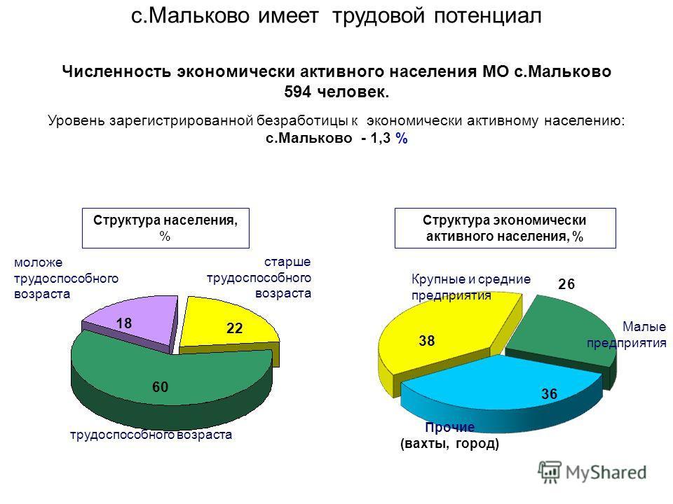 Характеристика населения МО продолжение Наименование показателя2007 г2008 г2009 г2010г2011 г 6. Занятость населения (по видам деятельности, в том числе социальная сфера), чел. 460648651660690 в том числе в материальном производстве: 264376 промышленн