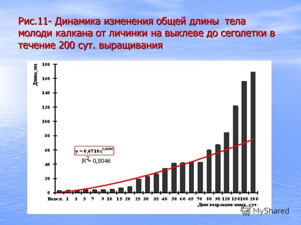 Рис.11- Динамика изменения общей длины тела молоди калкана от личинки на выклеве до сеголетки в течение 200 сут. выращивания