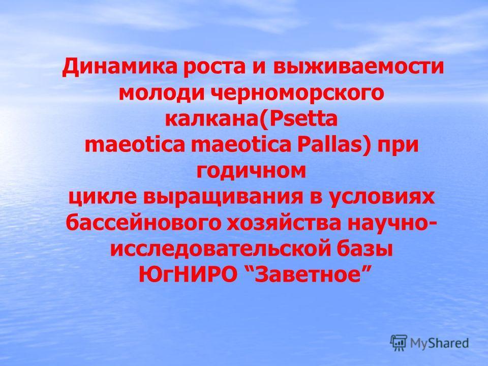 Динамика роста и выживаемости молоди черноморского калкана(Рsetta maeotica maeotica Pallas) при годичном цикле выращивания в условиях бассейнового хозяйства научно- исследовательской базы ЮгНИРО Заветное