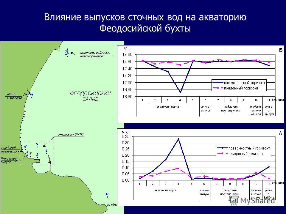 Влияние выпусков сточных вод на акваторию Феодосийской бухты