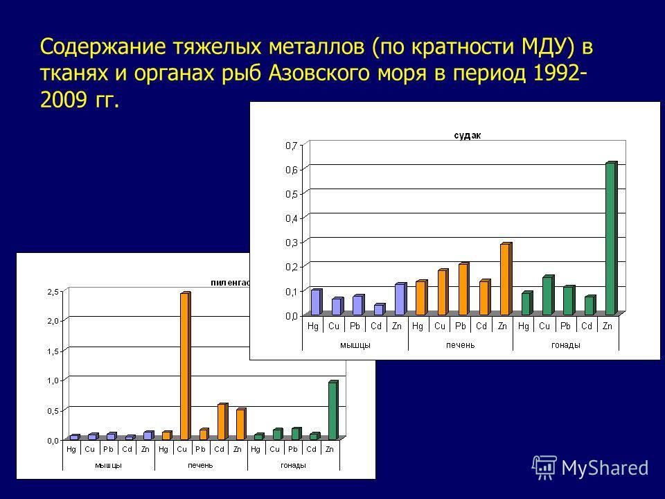 Содержание тяжелых металлов (по кратности МДУ) в тканях и органах рыб Азовского моря в период 1992- 2009 гг.