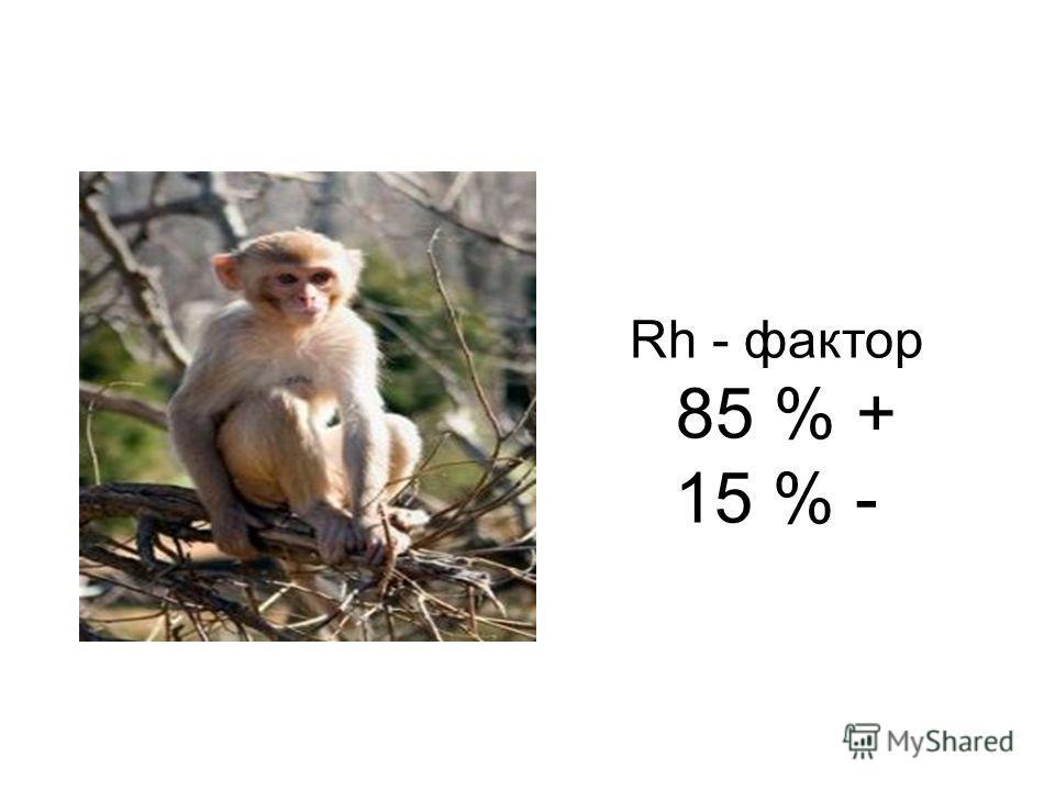 Rh - фактор 85 % + 15 % -