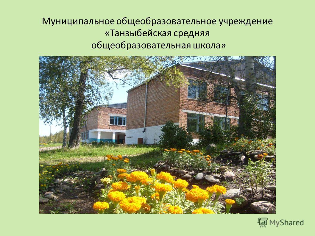 Муниципальное общеобразовательное учреждение «Танзыбейская средняя общеобразовательная школа»