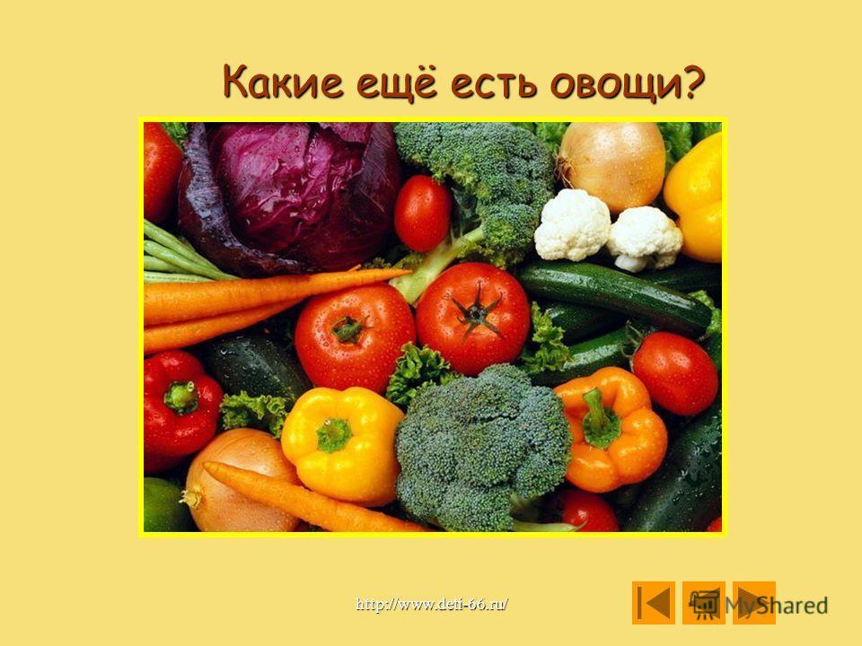 Назови, что лишнее? http://www.deti-66.ru/