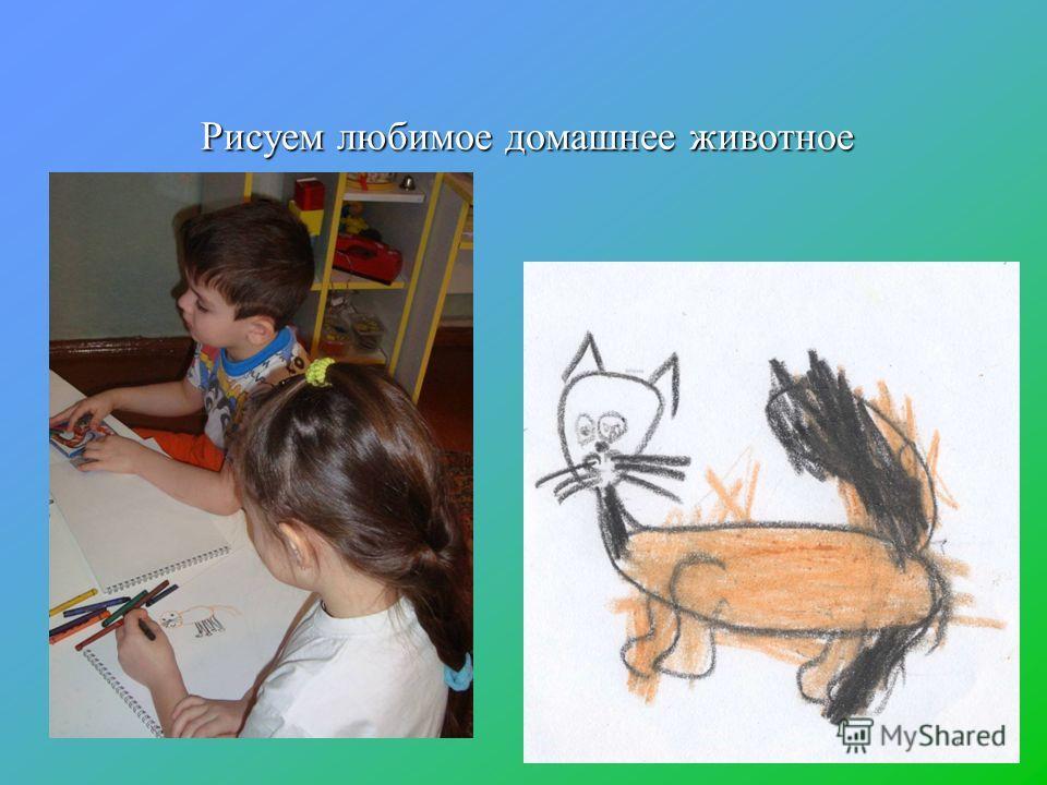 Рисуем любимое домашнее животное