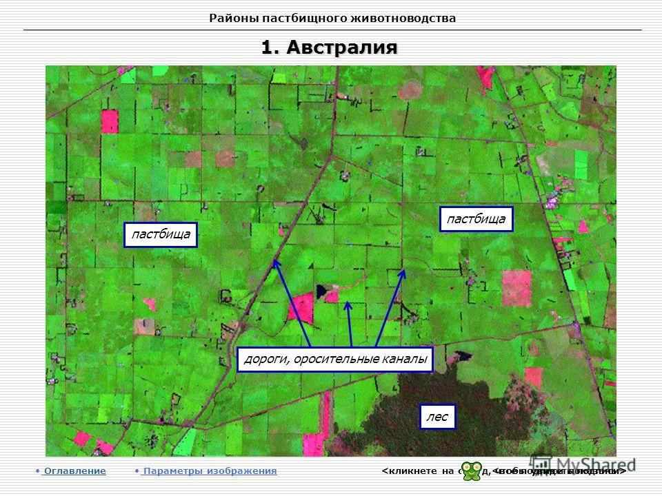 Районы пастбищного животноводства 1. Австралия Оглавление Оглавление Параметры изображения пастбища лес пастбища дороги, оросительные каналы