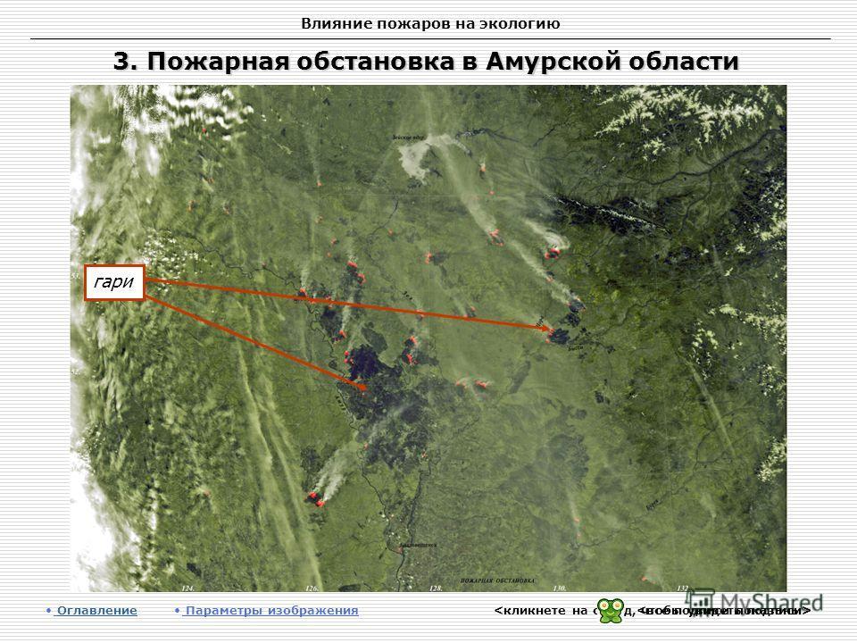 Влияние пожаров на экологию 3. Пожарная обстановка в Амурской области Оглавление Оглавление Параметры изображения гари