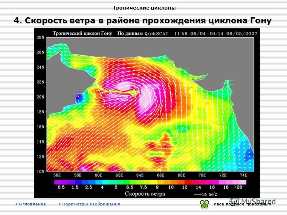 Тропические циклоны 4. Скорость ветра в районе прохождения циклона Гону Оглавление Оглавление Параметры изображения