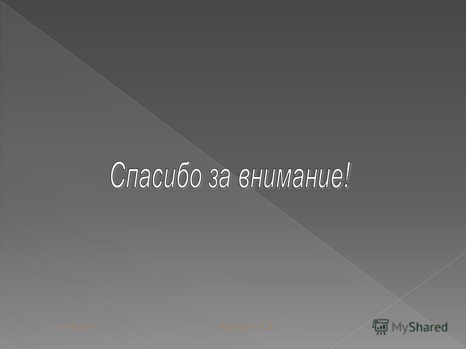 28.04.2011Анисимов А.Б.19