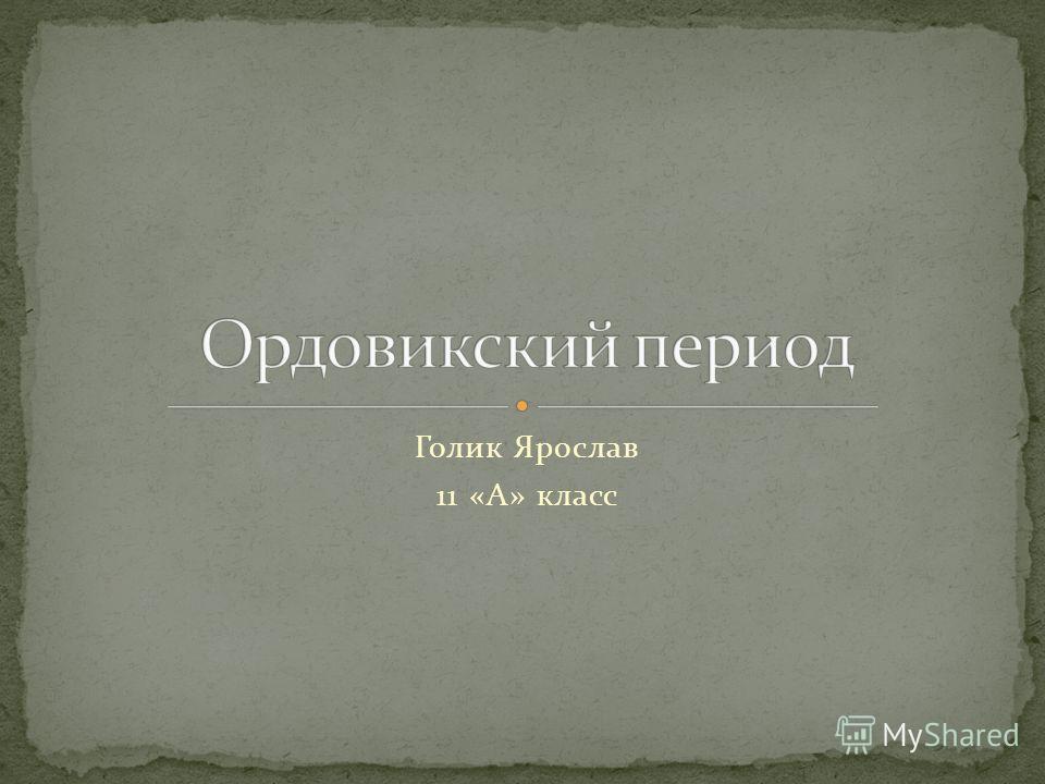 Голик Ярослав 11 «А» класс