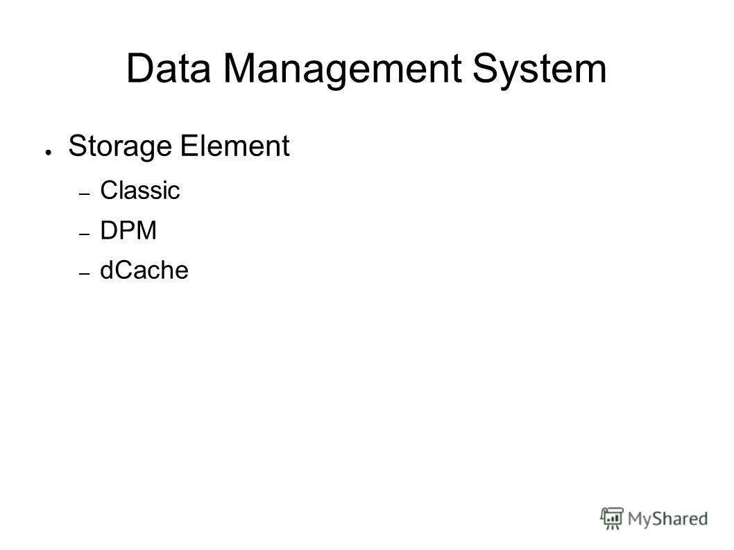 Data Management System Storage Element – Classic – DPM – dCache