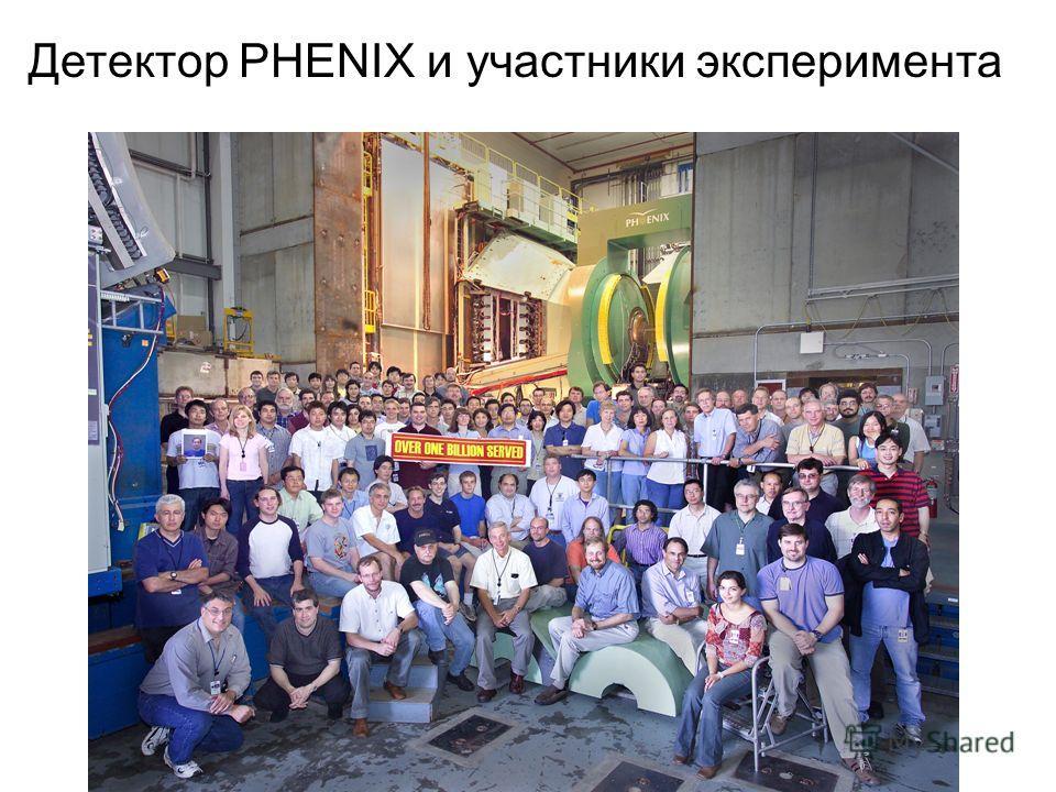 Детектор PHENIX и участники эксперимента