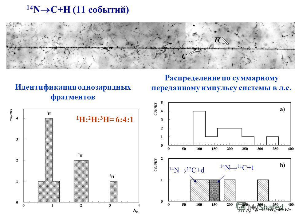 14 N C+H (11 событий) 1 Н: 2 Н: 3 Н= 6:4:1 Распределение по суммарному переданному импульсу системы в л.с. С Н Идентификация однозарядных фрагментов 14 N 12 C+d 14 N 11 C+t