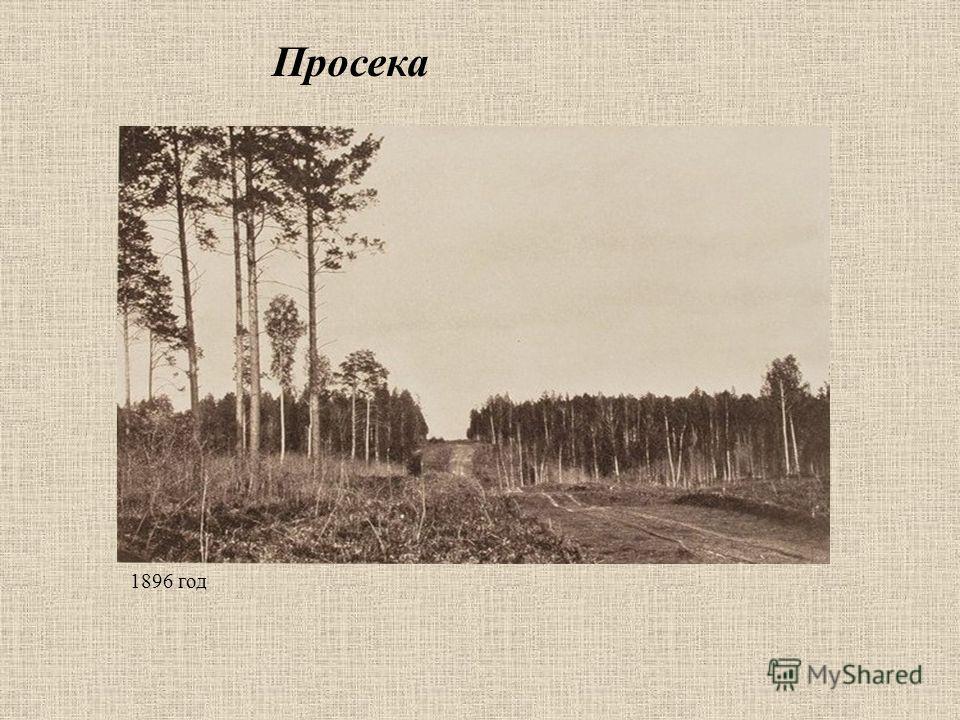 Просека 1896 год