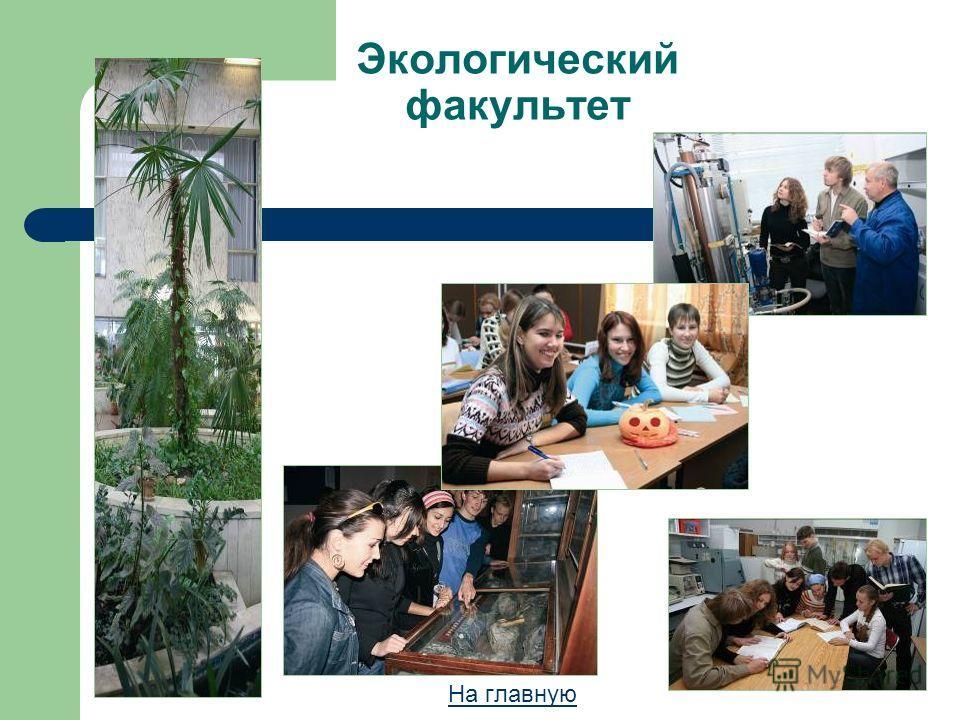 Экологический факультет На главную