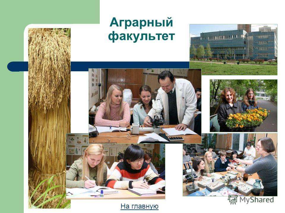 Аграрный факультет На главную