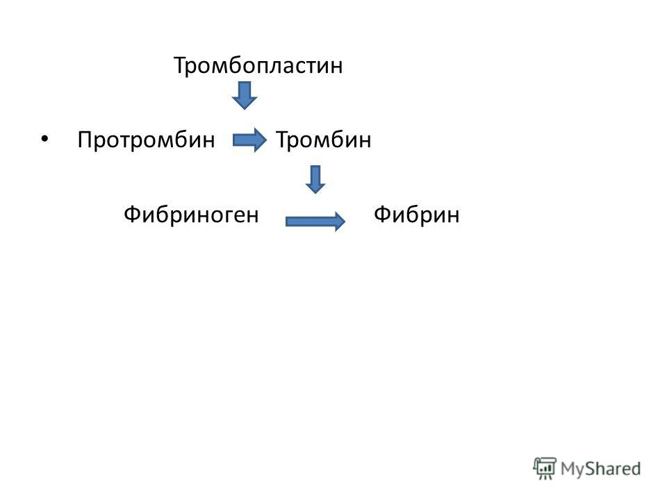 Тромбопластин Протромбин Тромбин ФибриногенФибрин