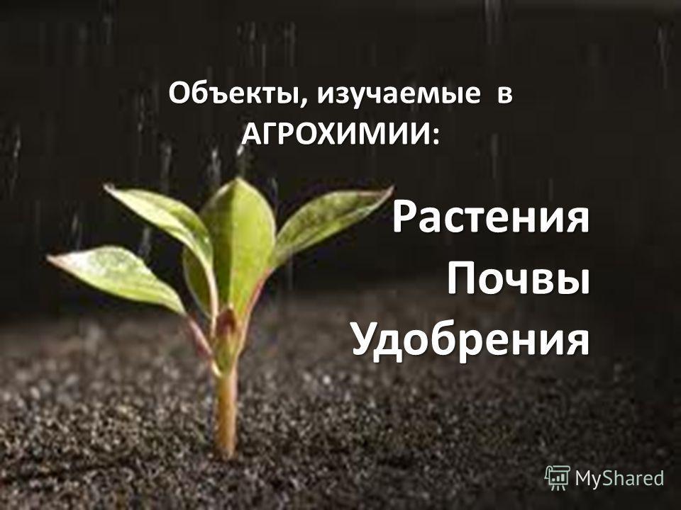 Объекты, изучаемые в АГРОХИМИИ Объекты, изучаемые в АГРОХИМИИ:РастенияПочвыУдобрения