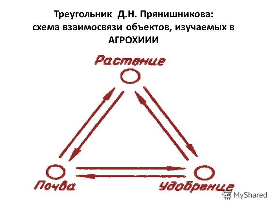 Треугольник Д.Н. Прянишникова: схема взаимосвязи объектов, изучаемых в АГРОХИИИ