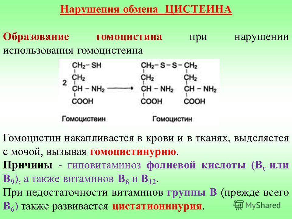 Нарушения обмена ЦИСТЕИНА Образование гомоцистина при нарушении использования гомоцистеина Гомоцистин накапливается в крови и в тканях, выделяется с мочой, вызывая гомоцистинурию. Причины - гиповитаминоз фолиевой кислоты (В с или В 9 ), а также витам