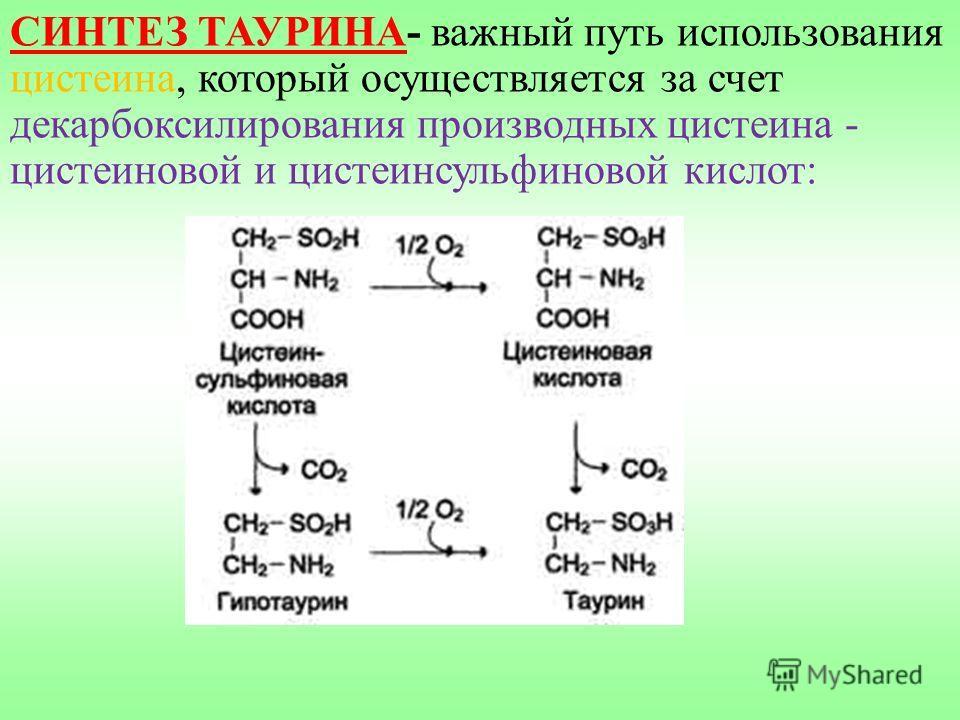 СИНТЕЗ ТАУРИНА- важный путь использования цистеина, который осуществляется за счет декарбоксилирования производных цистеина - цистеиновой и цистеинсульфиновой кислот: