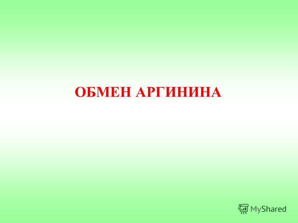 ОБМЕН АРГИНИНА