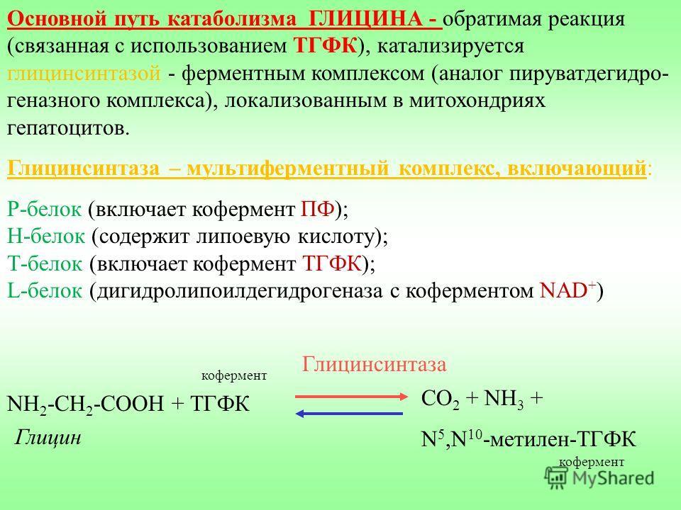 Основной путь катаболизма ГЛИЦИНА - обратимая реакция (связанная с использованием ТГФК), катализируется глицинсинтазой - ферментным комплексом (аналог пируватдегидро- геназного комплекса), локализованным в митохондриях гепатоцитов. Глицинсинтаза – му