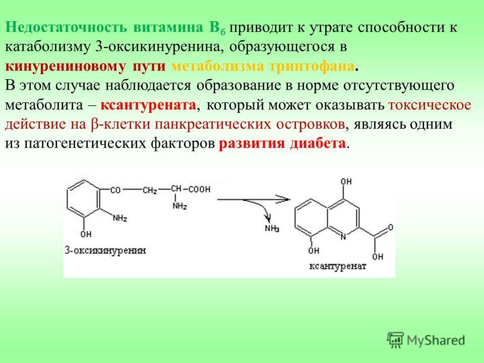 Недостаточность витамина В 6 приводит к утрате способности к катаболизму 3-оксикинуренина, образующегося в кинурениновому пути метаболизма триптофана. В этом случае наблюдается образование в норме отсутствующего метаболита – ксантурената, который мож